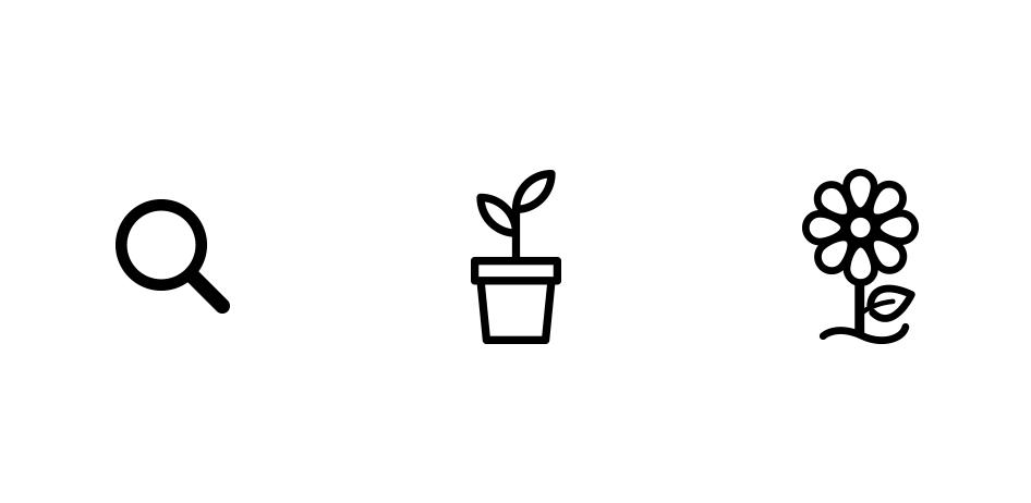 04-concept-bloom