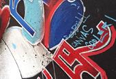 Redbull Canvas Cooler